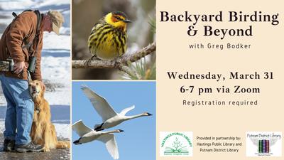 Backyard Birding and Beyond