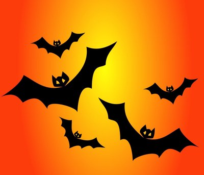 Science Storytime - Batty for bats!