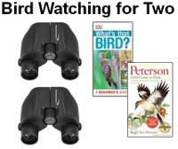 Library of Things Bird Watching