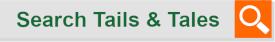 SearchBarTails.png